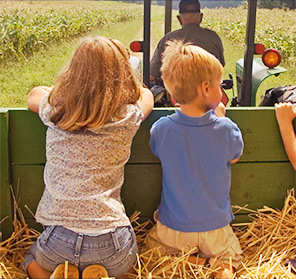 Covered Hayrides